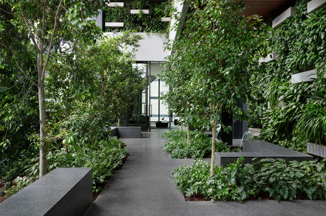 Australia's first indoor forest now complete in CBD tower Paragon